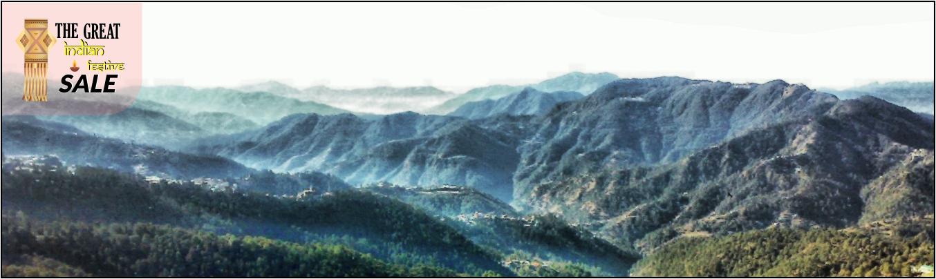 Shimla / Manali